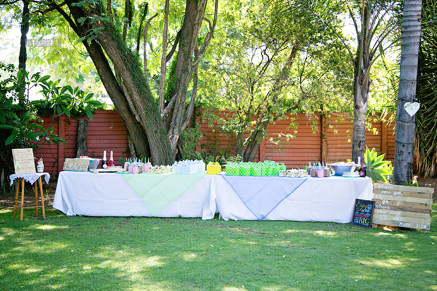 elize-mare-photography-picnic wedding