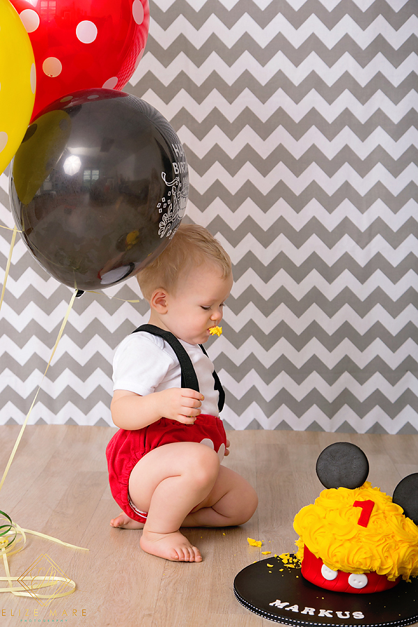 Elize Mare Photography Mickey Mouse Cake Smash