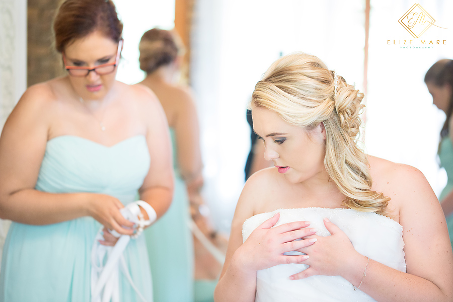 Elize Mare Photography Roseview Hill Wedding-1