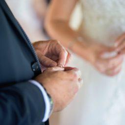 Wedding {F&E}